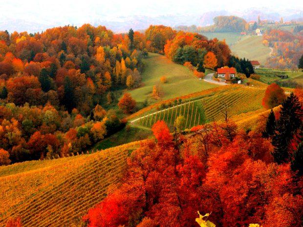 Fall Season Quotes Wallpapers Hd Fall Scenery Wallpapers Pixelstalk Net