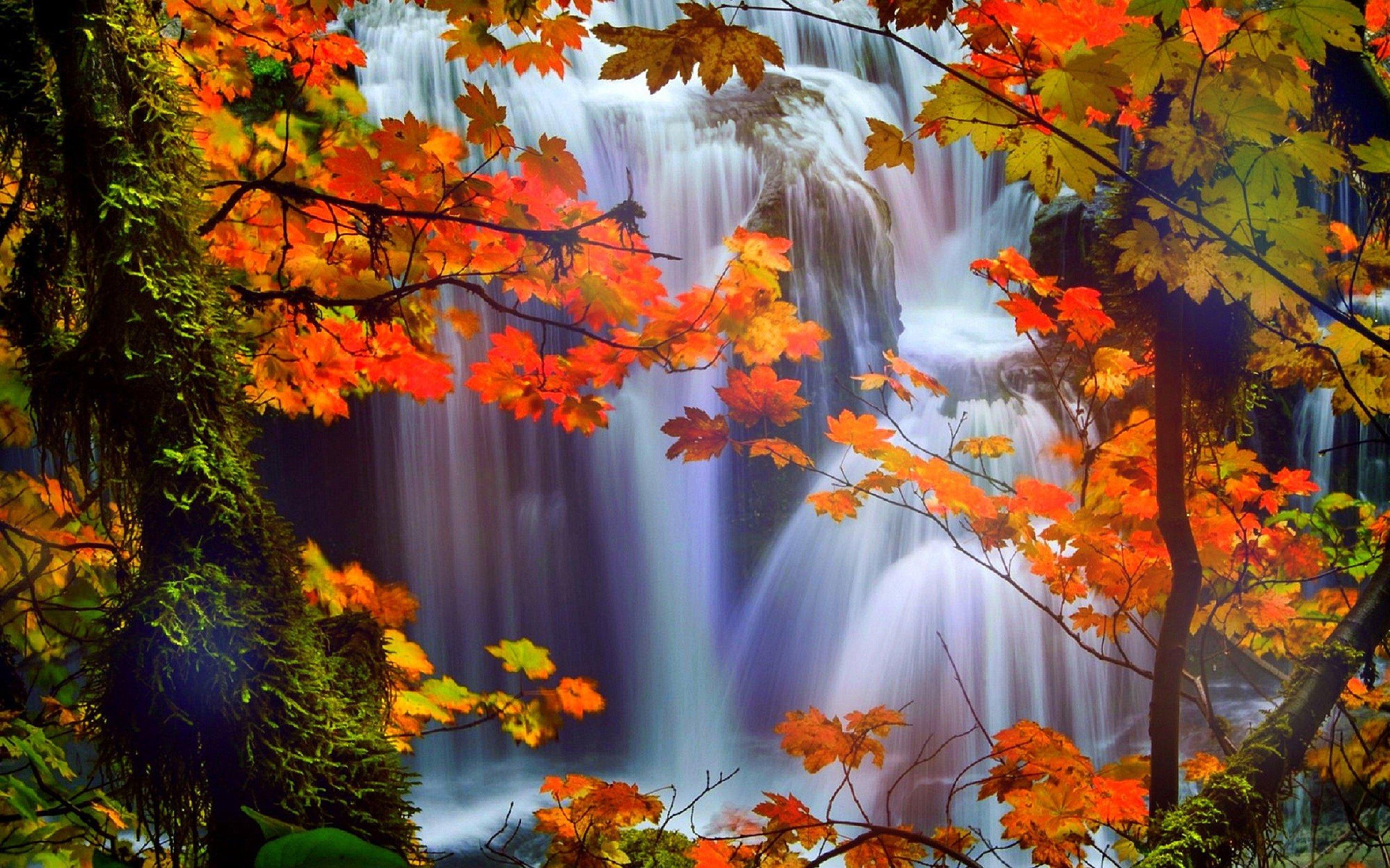 Fall Sunflower Desktop Wallpaper Hd Fall Scenery Wallpapers Pixelstalk Net