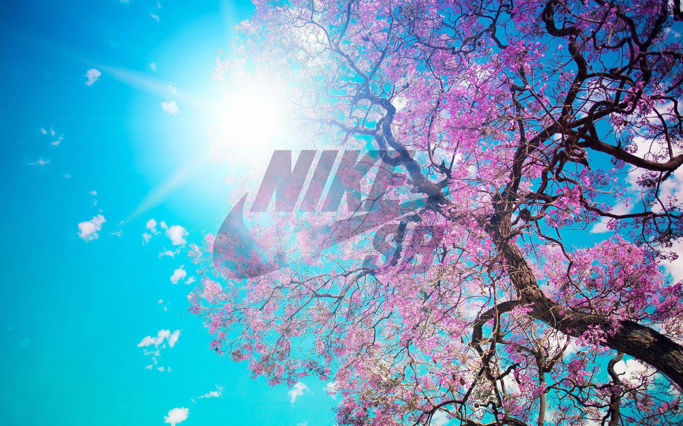 Travel Agency Wallpaper Hd Nike Sb Logo Hd Wallpapers Pixelstalk Net