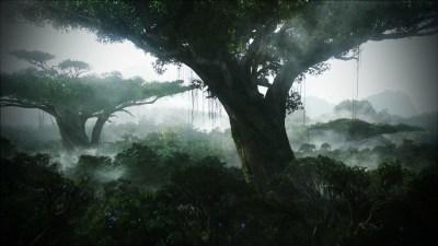 HD Jungle Desktop Backgrounds | PixelsTalk.Net