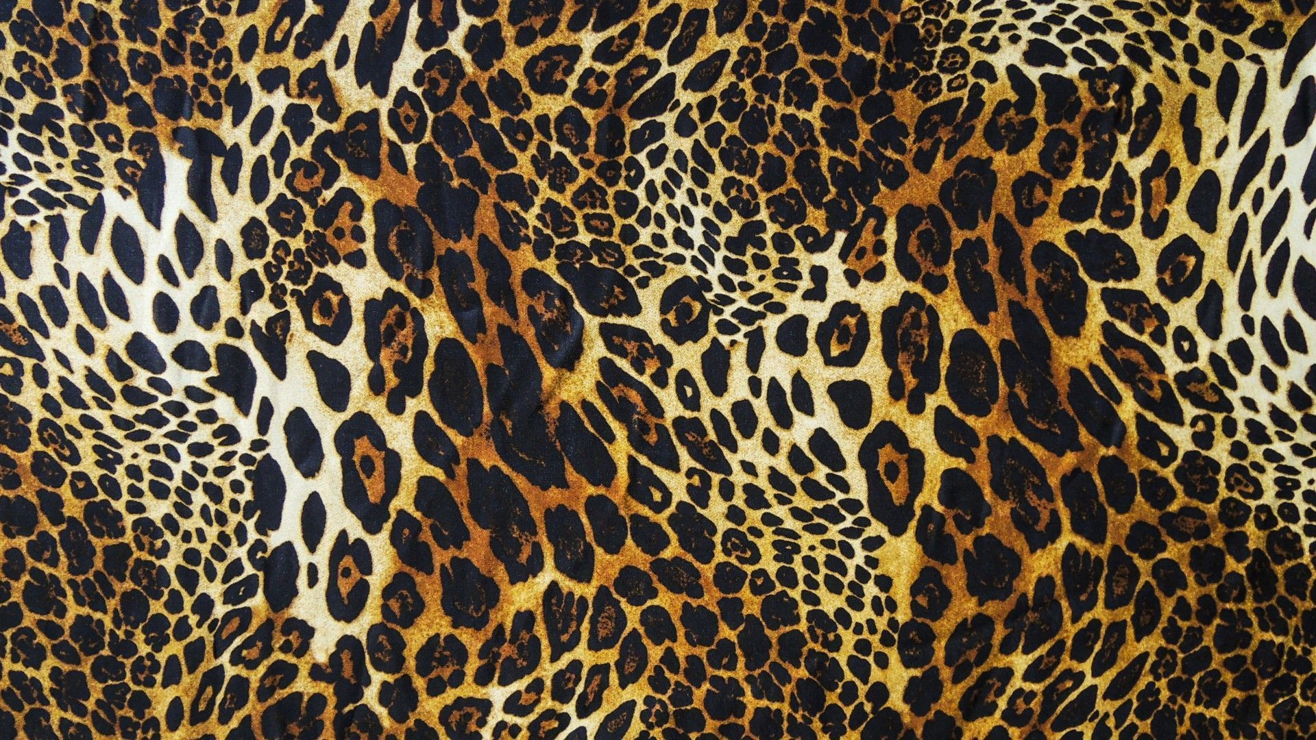 Full Screen Fall Wallpaper Leopard Print Wallpapers Hd Pixelstalk Net