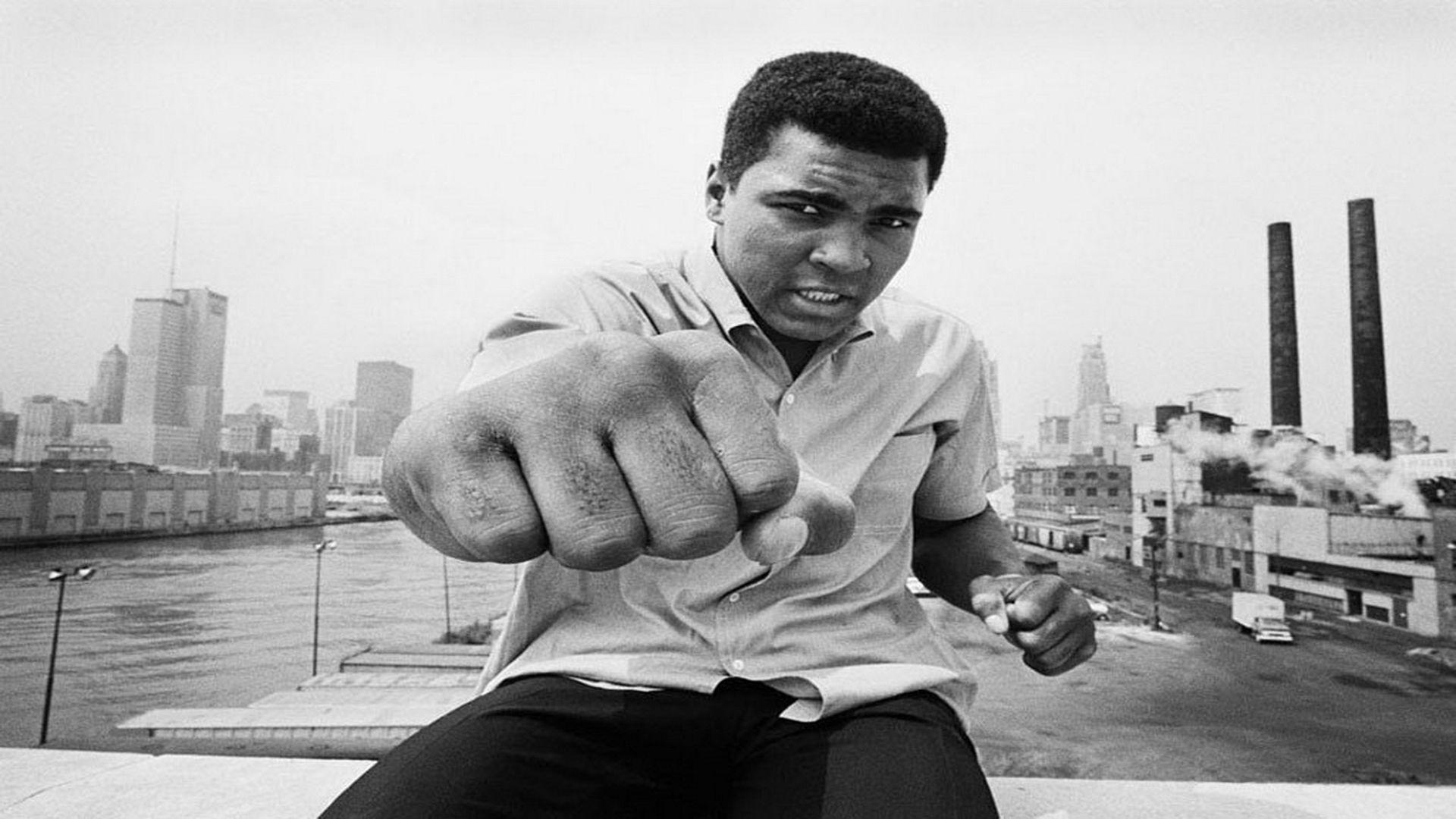 3d Kickboxing Wallpaper Muhammad Ali Hd Backgrounds Pixelstalk Net