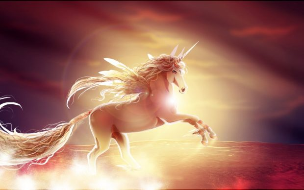 Beautiful Wallpaper Of Love With Quotes Unicorn Wallpapers Hd Pixelstalk Net