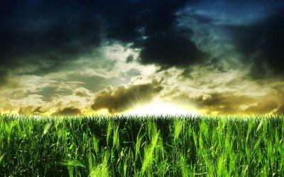3D HD Nature Images Free Download | PixelsTalk.Net
