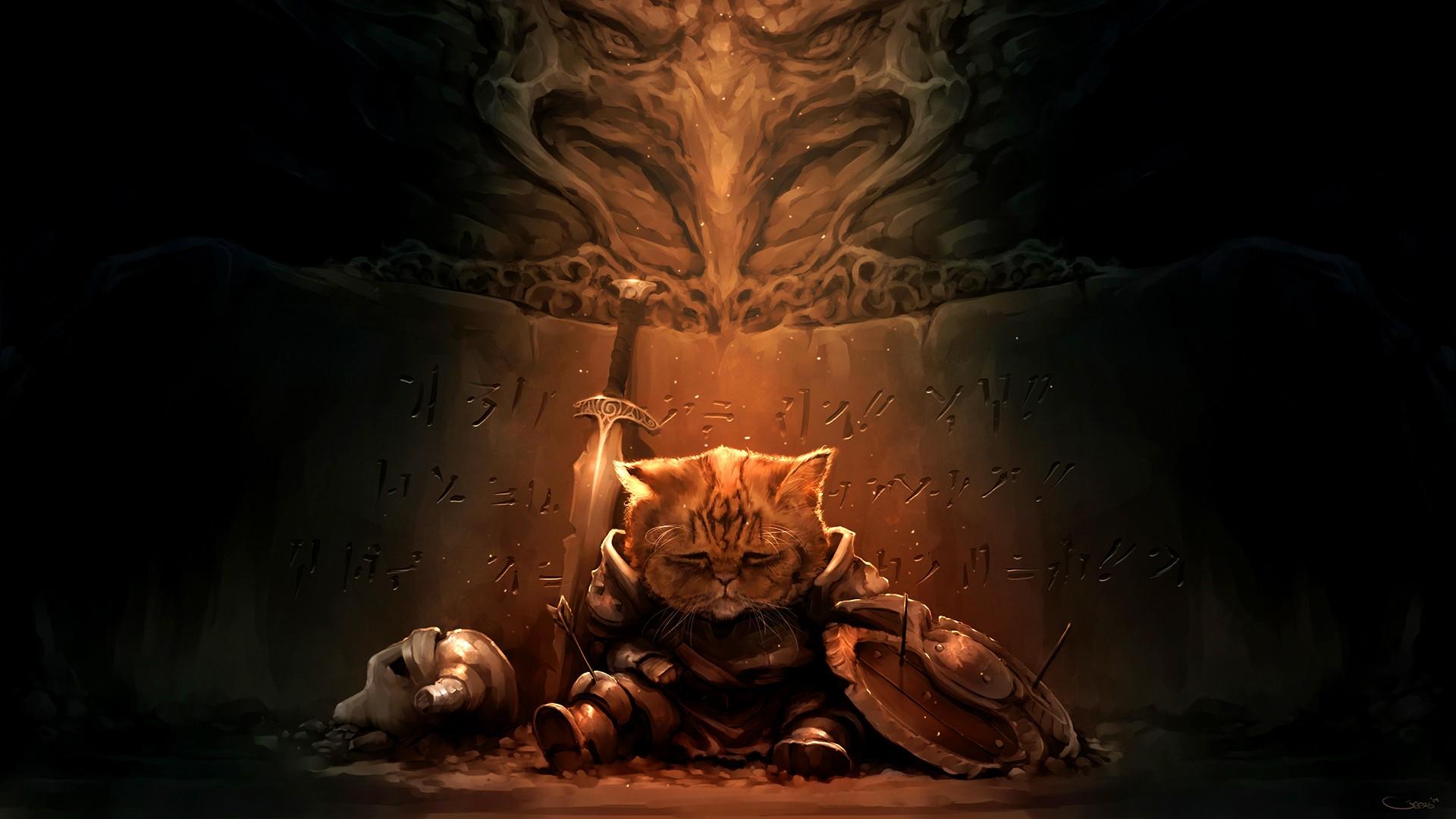 Crazy 3d Wallpapers Hd Download Free Warrior Cats Backgrounds Pixelstalk Net