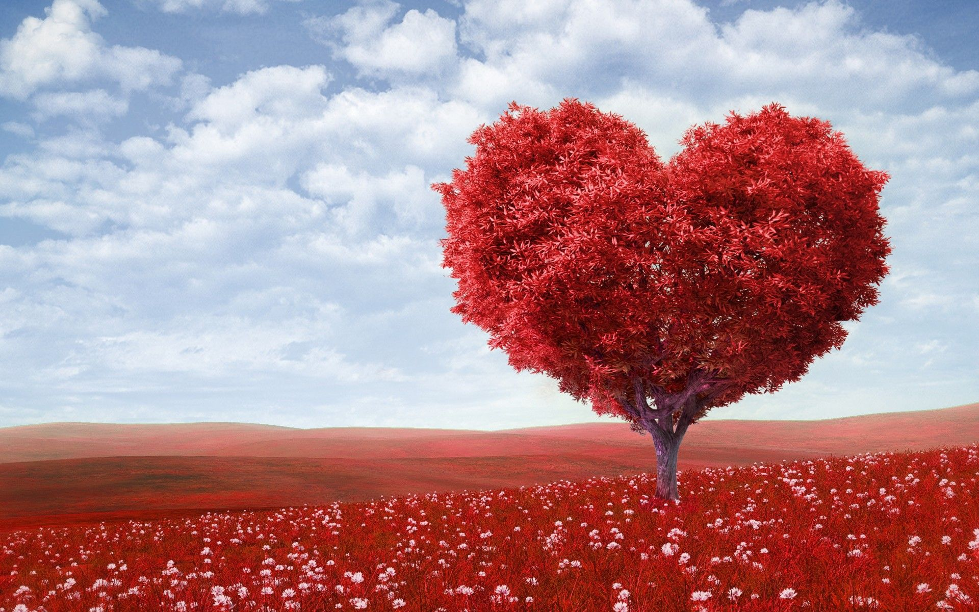 Love And Romance Wallpapers With Quotes Beautiful Love Wallpapers For Desktop Pixelstalk Net