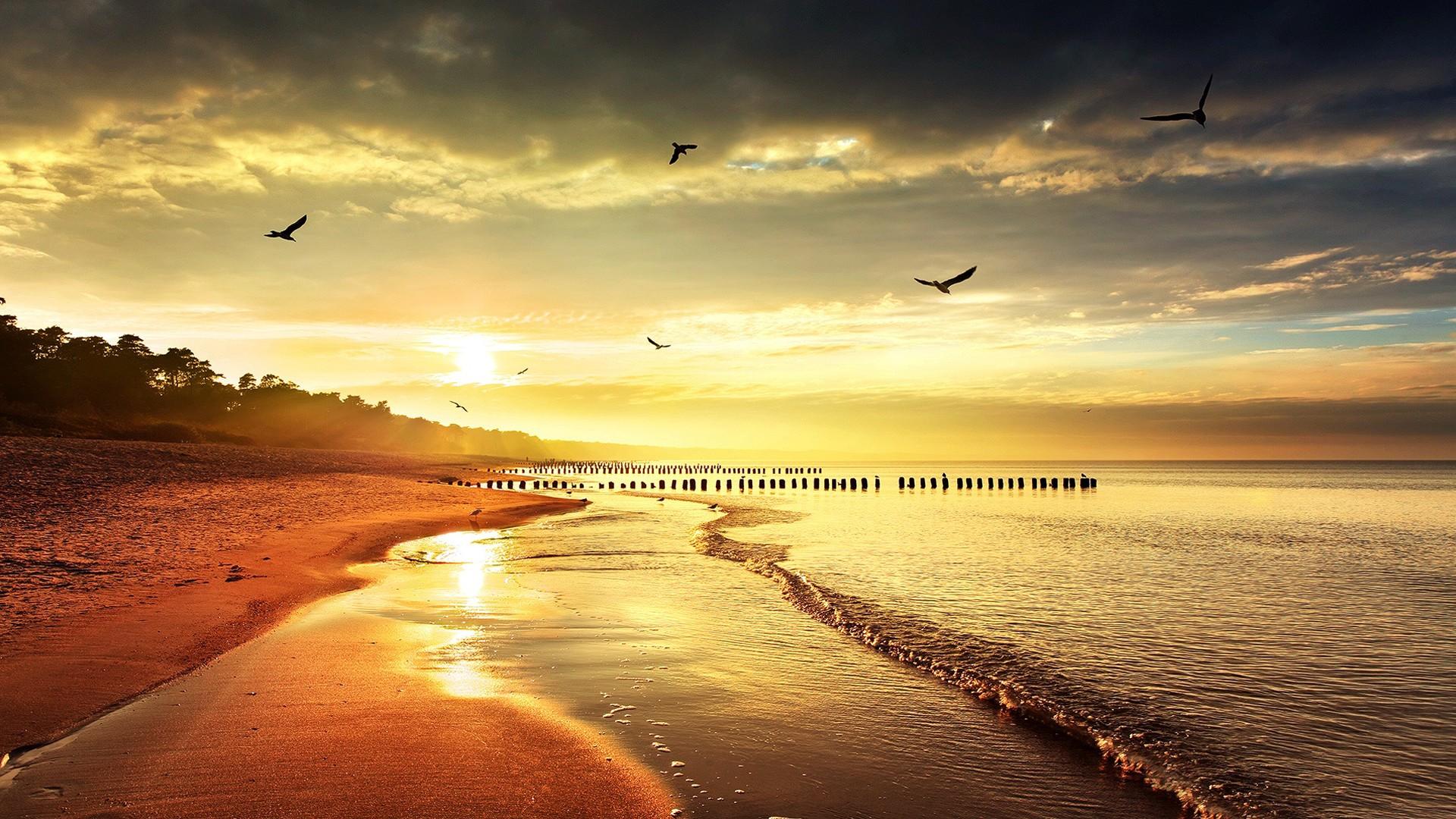 Happy Thanksgiving 3d Wallpaper Sunset Beaches Hd Images Pixelstalk Net
