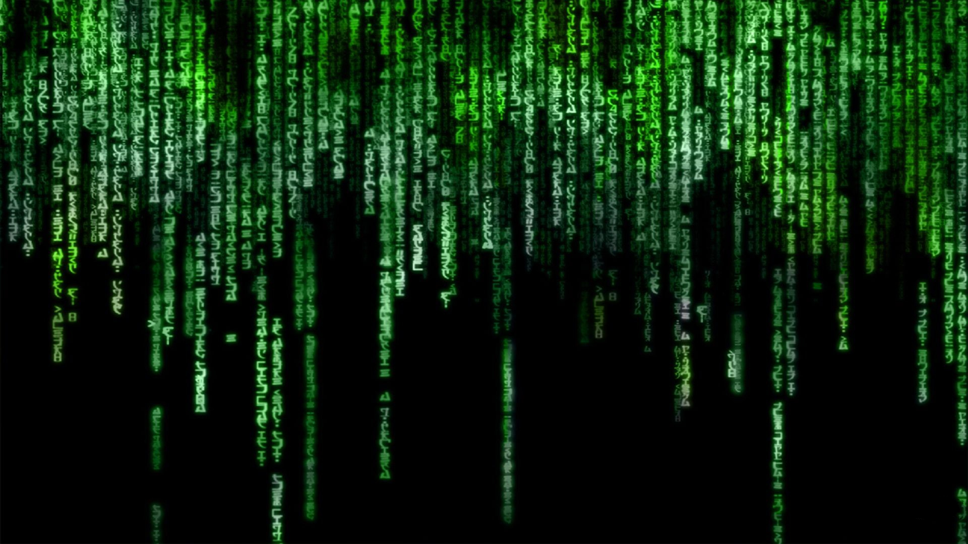 the matrix full hd wallpaper and background