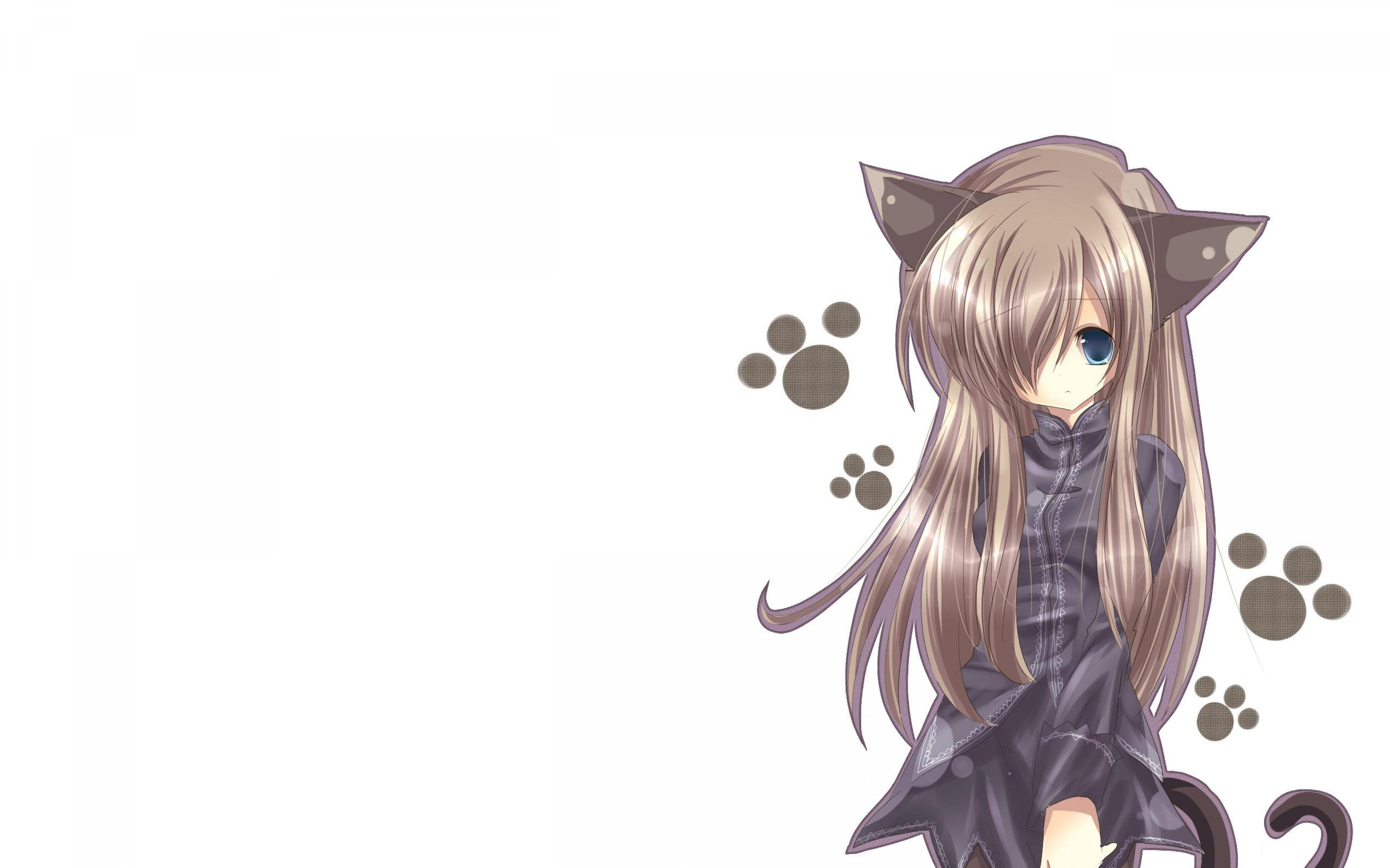 Cute Cat Wallpaper For Iphone Hd Anime Cat Background Pixelstalk Net