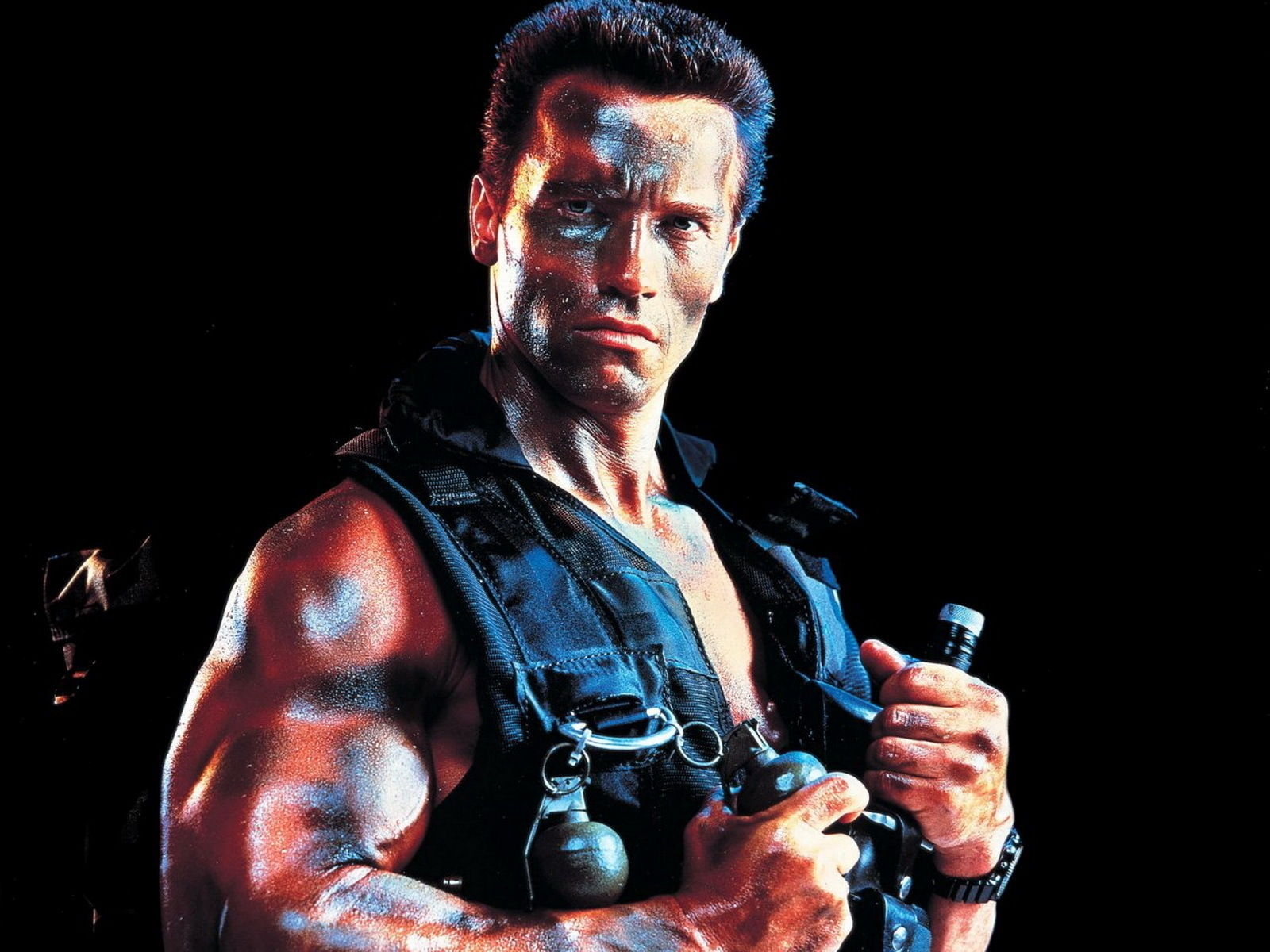 Beautiful Quotes And Inspirational Wallpapers Hd Arnold Schwarzenegger Hd Wallpaper Pixelstalk Net