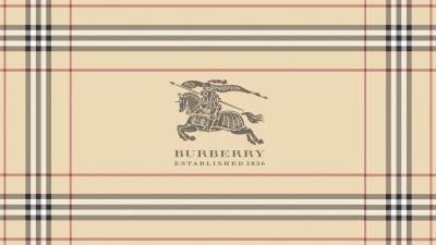 Burberry Wallpaper HD | PixelsTalk.Net