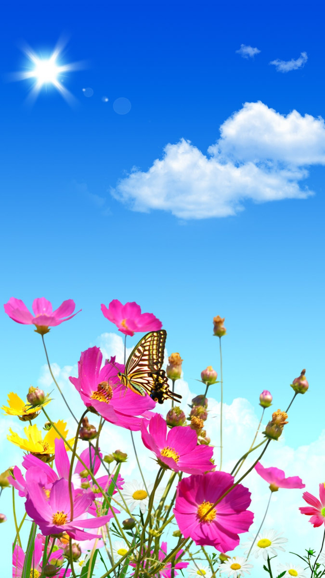 Summer Android Wallpaper Quotes Butterfly Wallpaper For Android Pixelstalk Net