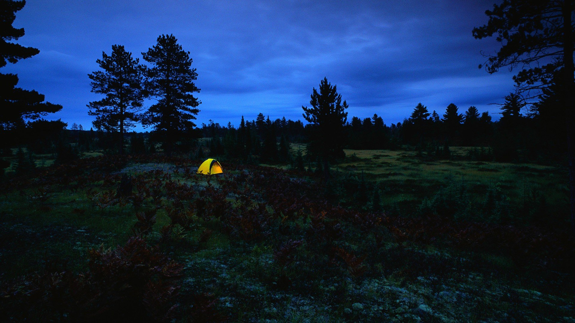 Full Screen Fall Wallpaper Camping Backgrounds Free Download Pixelstalk Net