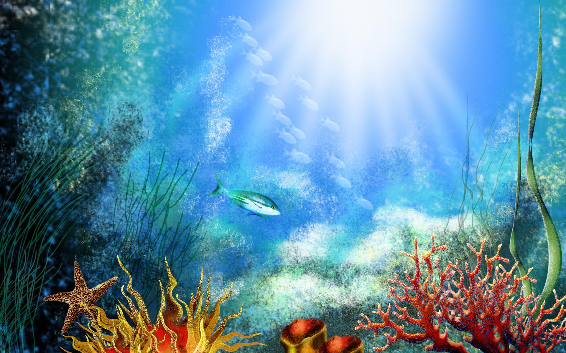 Fish Tank 3d Wallpaper Fish Tank Backgrounds Download Pixelstalk Net