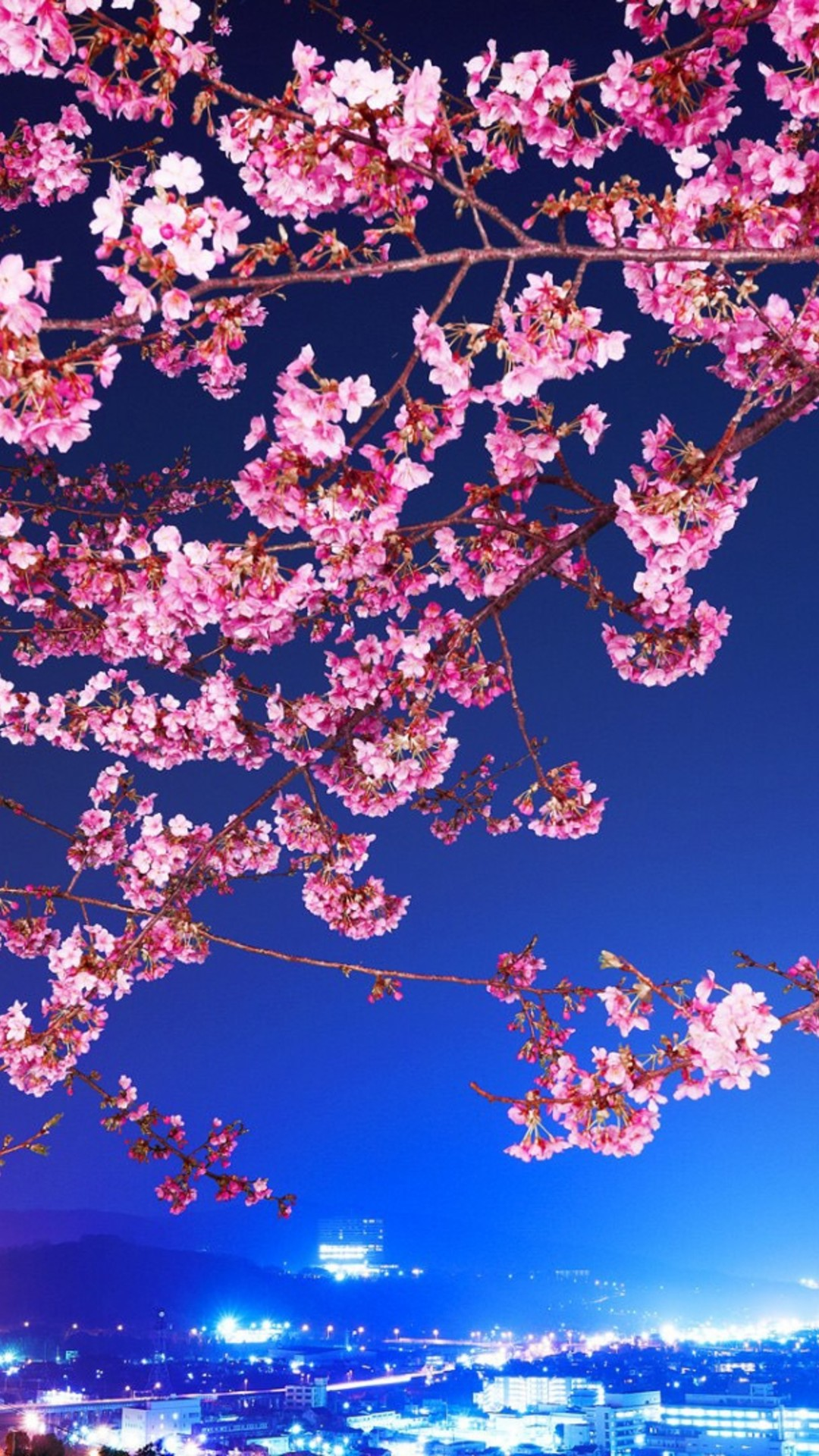 Gambar Wallpaper 3d Bergerak Cherry Blossom Iphone Hd Wallpaper Pixelstalk Net