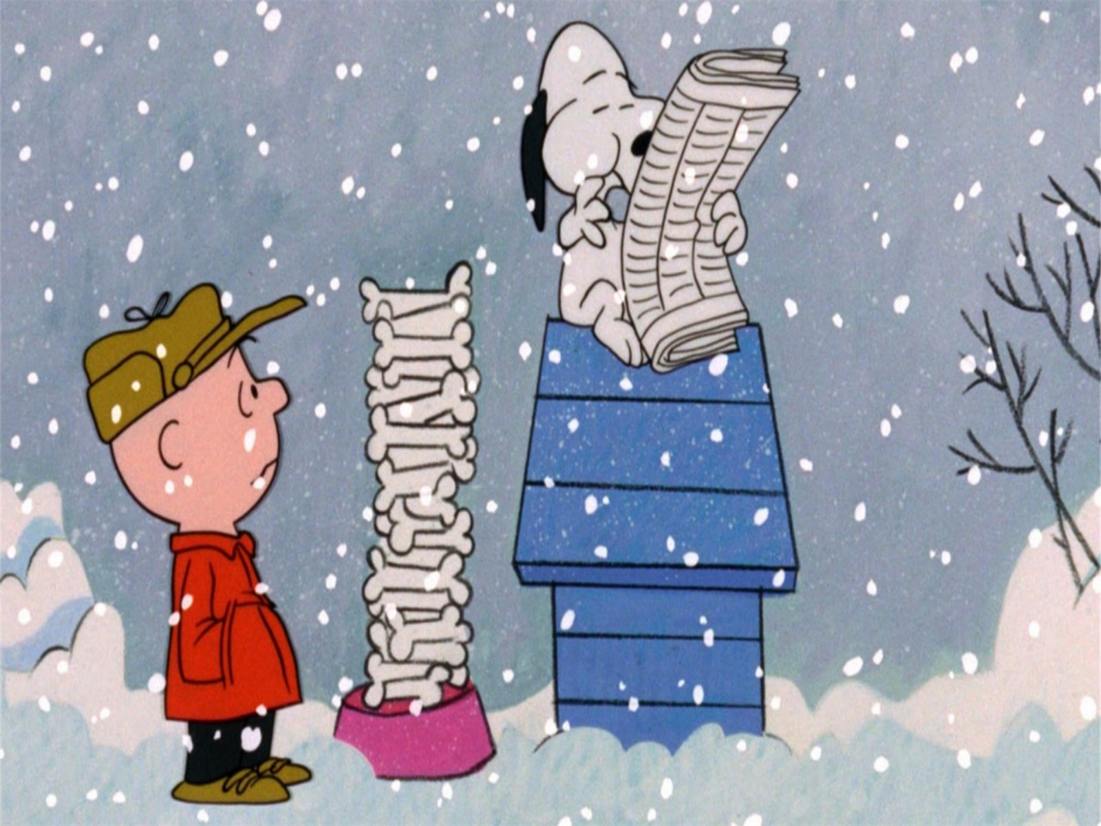 Cute Wallpapers With Quotes For Whatsapp Charlie Brown Christmas Wallpaper Free Download