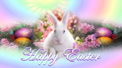 Easter Backgrounds download free   PixelsTalk.Net