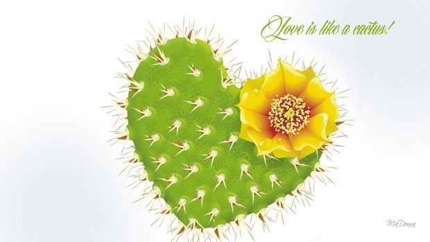 Wallpaper Full Hd 1080p 3d Cactus Desktop Background Pixelstalk Net