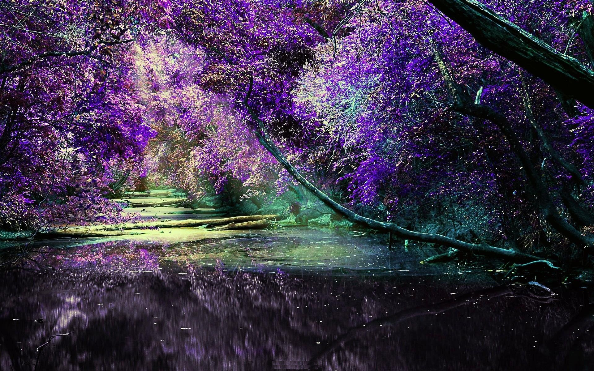 3d Cherry Blossom Wallpaper Hd Lilac Wallpapers Free Download Pixelstalk Net