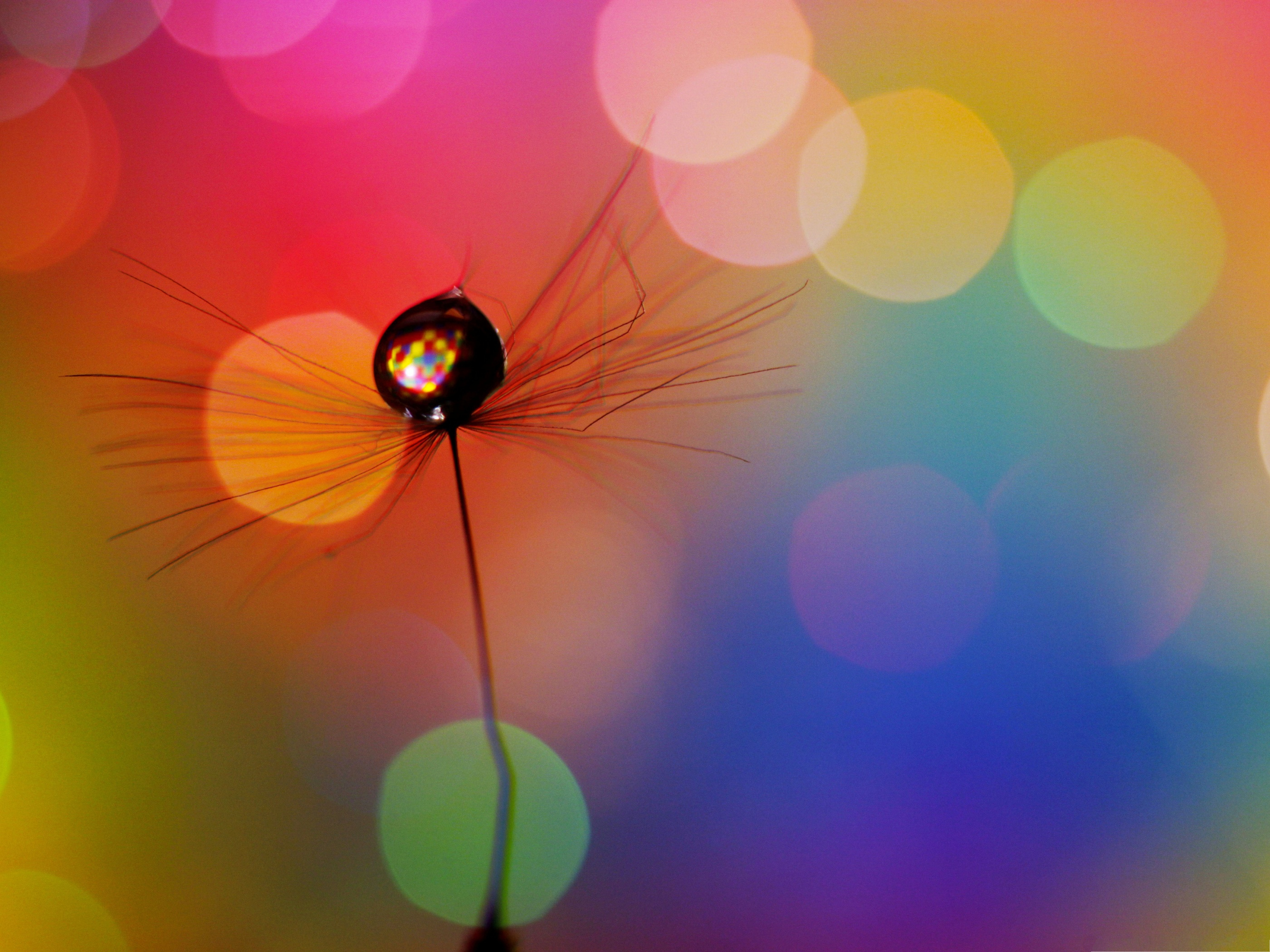 Fresh New Fall Hd Wallpapers Nice Wallpapers Colorful Pixelstalk Net
