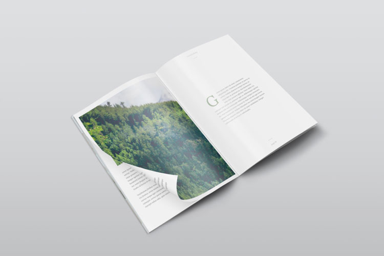 50+ Best Free Magazine and Book Cover PSD Mockup Templates 2018 Pixlov