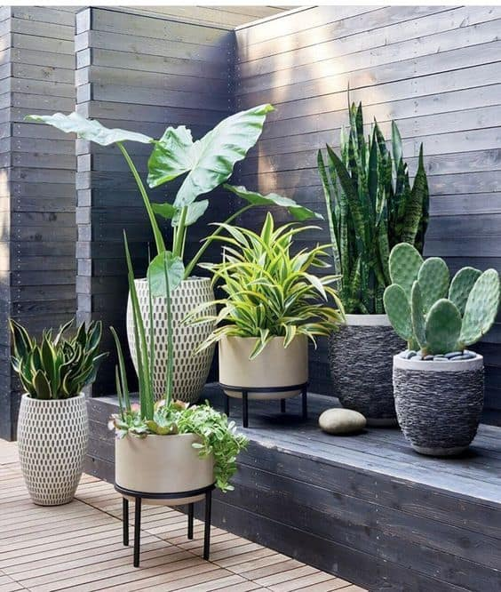 8 Ideas para decorar una terraza (o balcón) con plantas - Decoracion De Terrazas Con Plantas