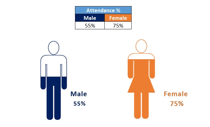 Male and Female Info-graphics in Excel - PK An Excel Expert
