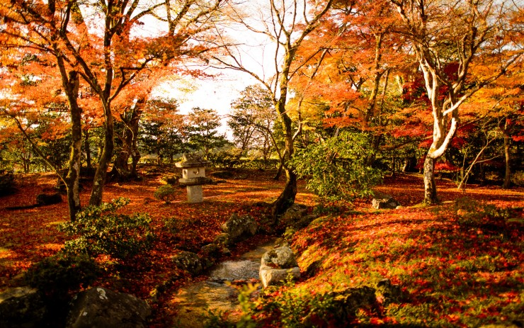 Fall Leaves Ponds Computer Wallpaper Top 10 Wonderful Japanese Gardens Places To See In Your
