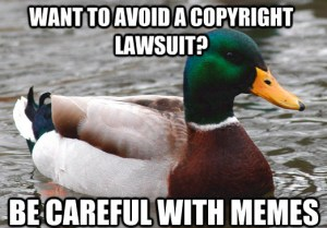 Advice Mallard Image