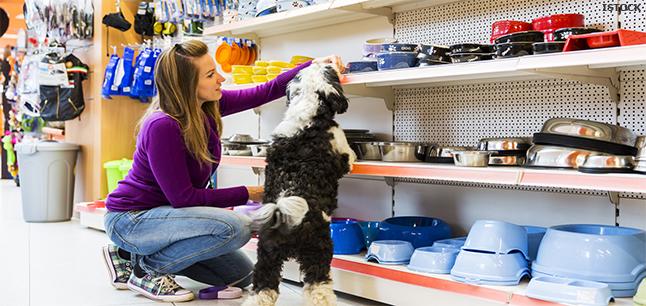 Planit  Job Profiles  Pet Shop Assistant Retail and Sales