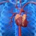 Tratamiento e Investigación Sobre Casos Clínicos de Cardiopatías Coronarias
