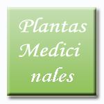 Efectos terapéuticos en el tratamiento de la Impotencia mediante la tonificación de Riñón con y sin estimulación colateral de la circulación sanguínea