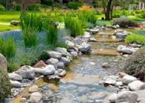 Instalar un jardín de agua