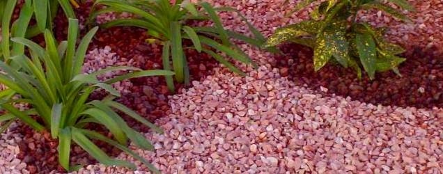 Piedras decorativas para tu jard n for Plantas decoradas con piedras