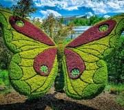 Atlanta-botanical-garden-5