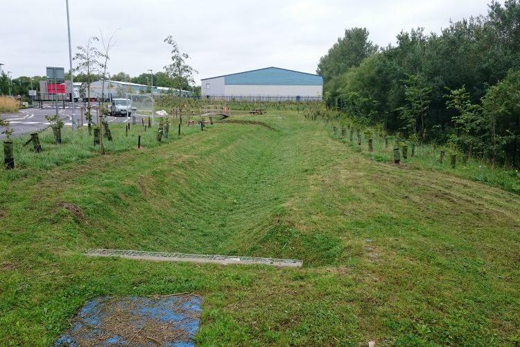 Short grass areas