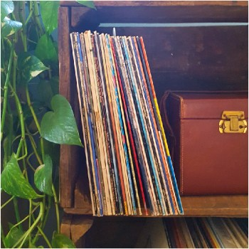 A Quick Record Storage Project - Plaster & Disaster