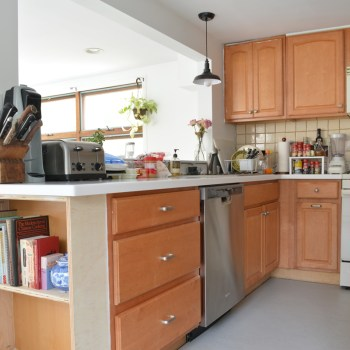 Removing and installing a dishwasher -- Plaster & Disaster