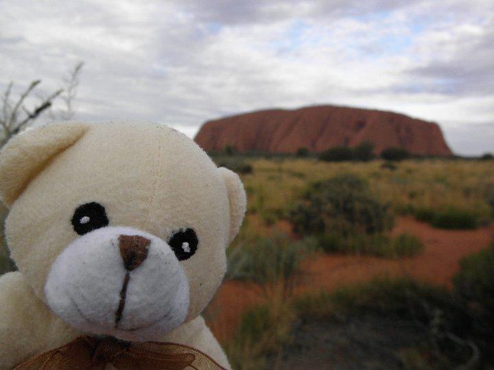 Photo d'un ours en peluche devant Uluru en WHV Australie