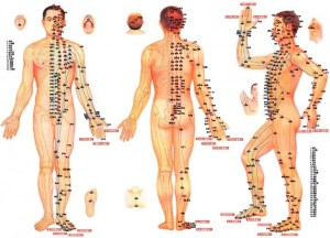 acupuncture-point