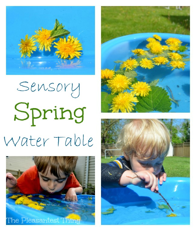 Sensory Spring Water Table: sights, feels, and smells of spring!