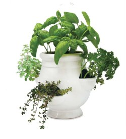 Small Of Gifts For Gardeners