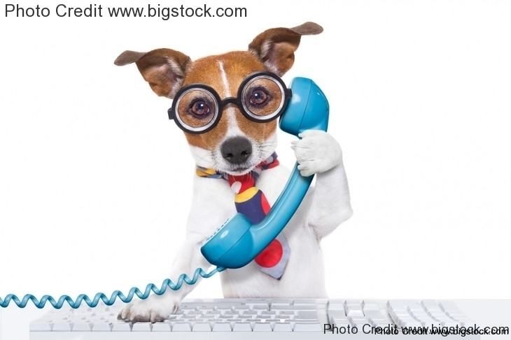 10 Excellent Phone Interview Questions and Answers Ploymint