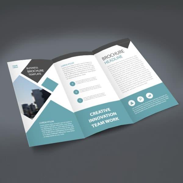 Tri-fold Brochures , Affordable  High-Quality Plum Grove Inc - tri brochures