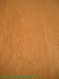 Bintangor (Bingtangor) Plywood