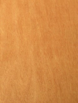 Red Canarium Plywood