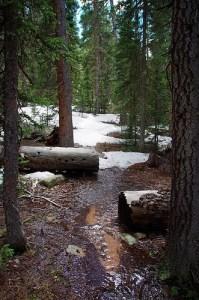 rotten-snow