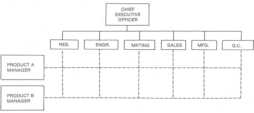 The matrix organization