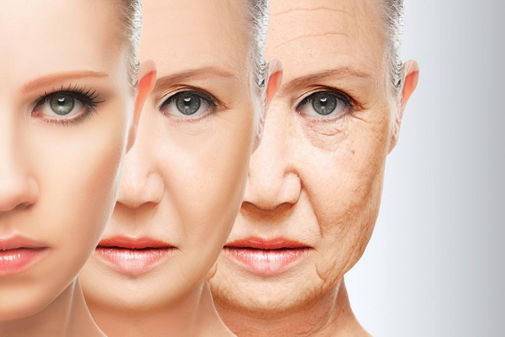 Understanding How Skin Ages