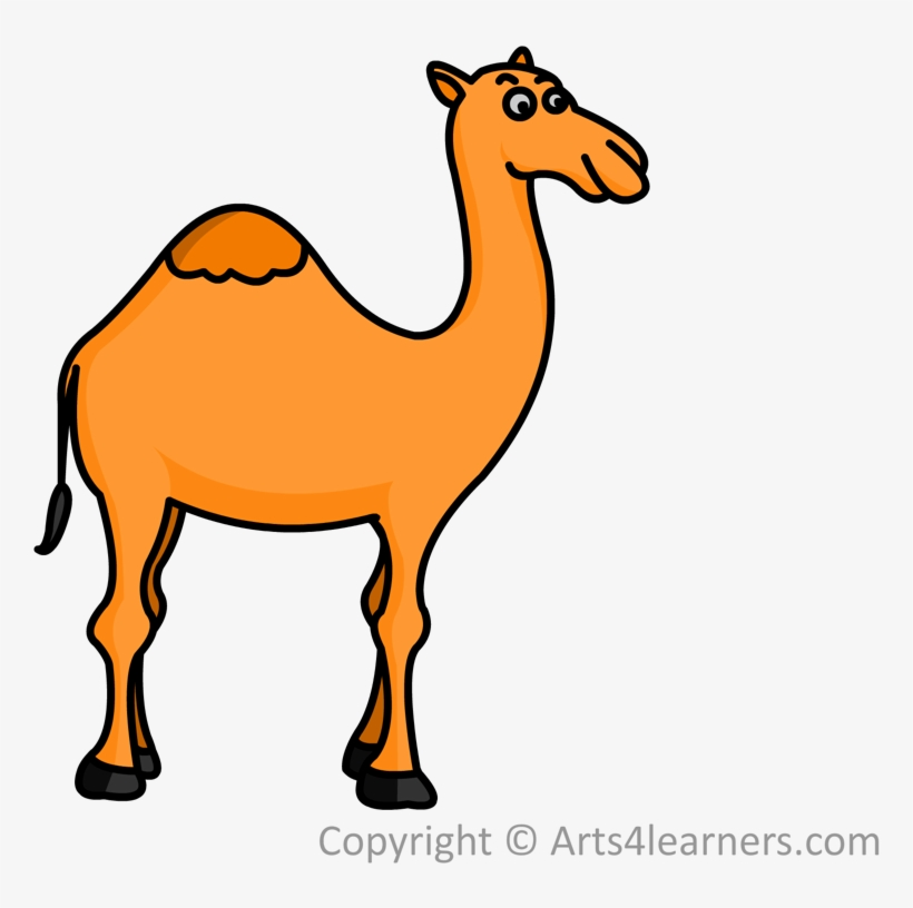 Drawn Camel Drawing - Easy Draw Camel - Free Transparent PNG